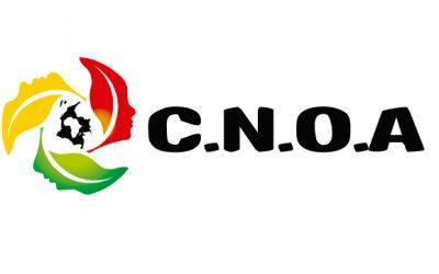 Ultimátum a Gobierno Nacional por crisis humanitaria Y falta de inclusión de pueblos afrodescendientes en acuerdos de paz